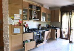 Cucina in legno massello marca Gatto